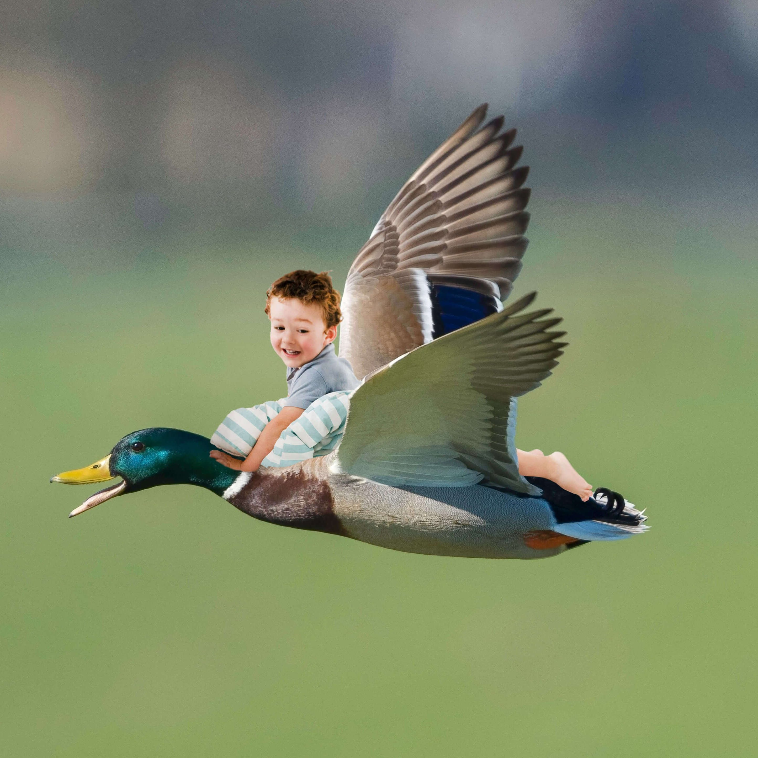 Adri con pato